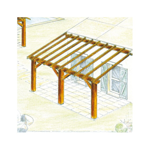 charpente terrasse bois